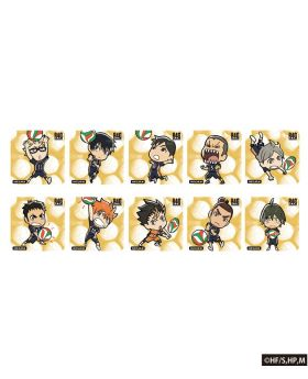 Haikyuu!! x R4G Collaboration Karasuno Volleyball Acrylic Magnet BLIND PACKS