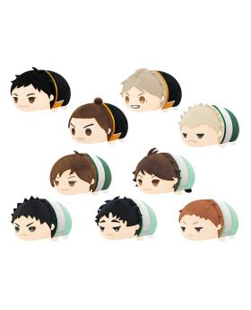 Haikyuu!! To The Top Mochi Mochi Mini Tsum Mascot Vol. 2 SET Animate Special RE-RELEASE