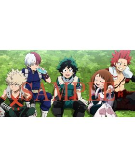 Boku No Hero Academia Season 4 DVD Set Volume 1-8 Toho Animation Special