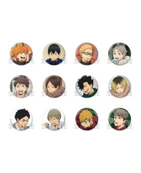 Haikyuu!! Animate Limited Edition One Fine Day! Goods Can Badges Set